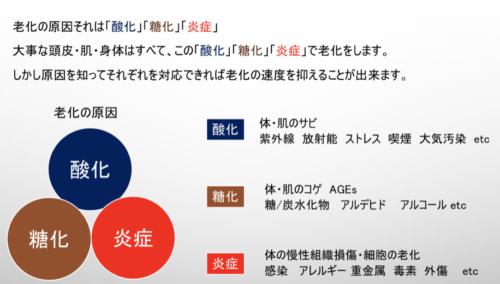 %e3%82%b9%e3%82%af%e3%83%aa%e3%83%bc%e3%83%b3%e3%82%b7%e3%83%a7%e3%83%83%e3%83%88-2020-12-21-21-24-53